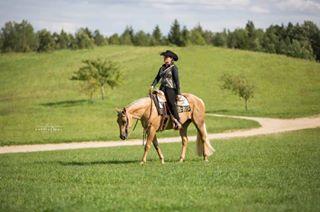 horsephotography equinephotography equinephotos pferdefotografie eqwtdstrot_1 equine aqhaproud