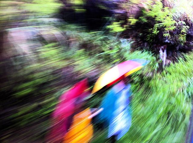 green holidays iphone4 love nature srilanka street streetphotography traveler