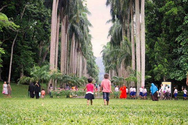 naturalgarden nikond3100 photographer srilanka travel