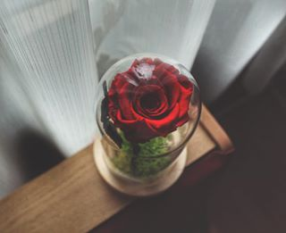 instagood lovephoto march canon photooftheday canon_photos photography roses friends rose capture canonphoto canon📷 photografyoftheday snapseed instalike