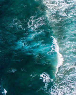 djiphantom4 sea sealovers sealife dronestagram sealover🌊 sealover dji drone dronephotography