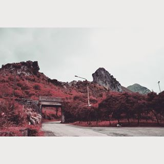 landscapelovers vojage ontheroad ig_italia red ontheroadtopalinuro rouge landscape_lovers trip dog palinuro ghostcity trees smallbridge tree landscapes toptags italy landscapehunter montain sky view amazing bridge cilento landscape_lover redmontain nature landscape mountains