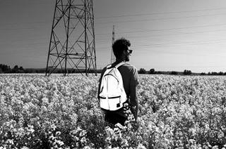 wanderlust spring repce rapeseedfield photography photograher naturephotography flowerpower flowerfields bnw blackandwhitephotography blackandwhitephoto blackandwhite bettinagal