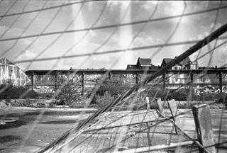 analogphotography 50mm analogisnotdead fisheyelemag kodak 35mm filmisnotdead argentique kodaktx400 fourcroy filmphotographer analog somewheremagazine kodakfilm buyfilmnotmegapixels brussels filmforever film 50mm14 canona1 belgium filmphotography