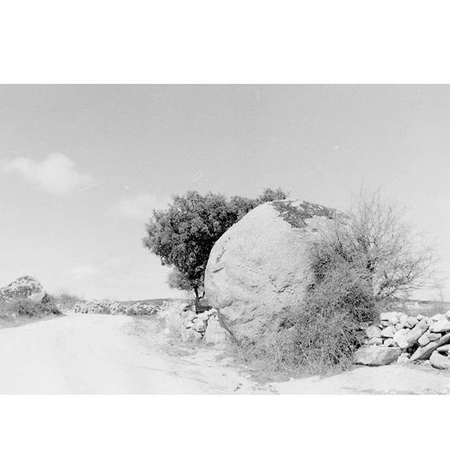 35mmpostcards photo: 1