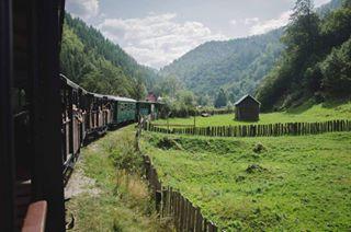 silence instadaily photography travel train green nikond7000 mountain mocanita nikon📷 picoftheday landscape instatravel instacool maramures nature romania