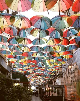 bucharest color enjoythemoment girlphotographer happiness instadaily instaphoto instapic joy newday phoneography photographers photography picofday street sweetnovember thursday umbrella