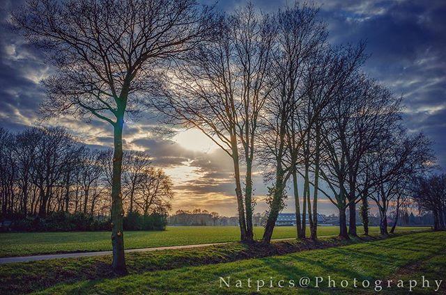 natpicsphotography photo: 0