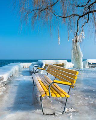 yellow myswitzerland sunny blickheimat heimat winterwonderland romanshorn freezing snow iloveswitzerland winterdream cold bench switzerland ice freezingcold