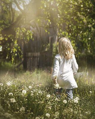 spring kidphotography dandelions