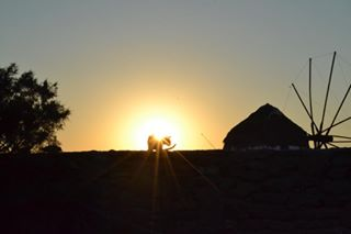 wonderful_mykonos summer like4like mykonos sunset ig_greece cat visitgreece noedit
