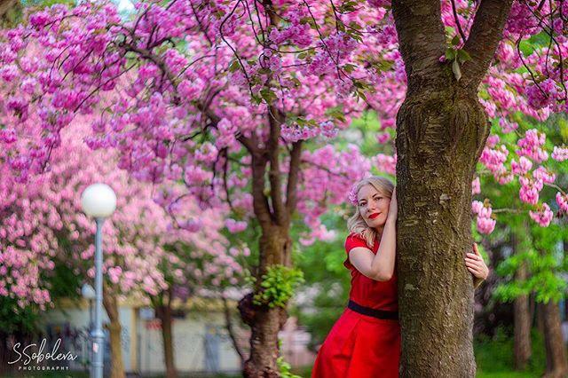 photograzcom photo: 1