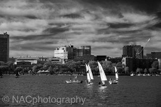nacphotography river nacphoto boston sailboats sail charlesriver