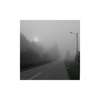 pine pinetree early thoughts departure publiclight horror myst whitestripes morning moon selfreflection foggy emptyroad fog sun road mysty