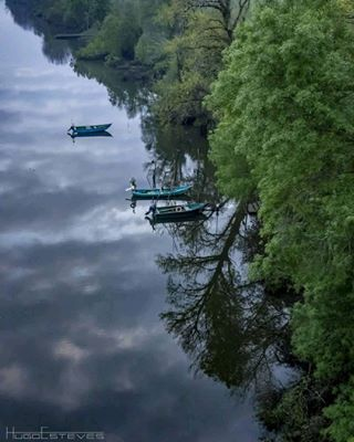 trees photo river boats green blue caminosantiago