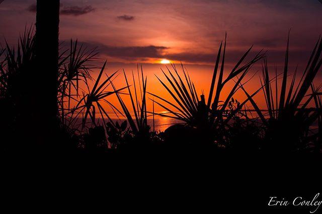 conleysunscapephotos photo: 1