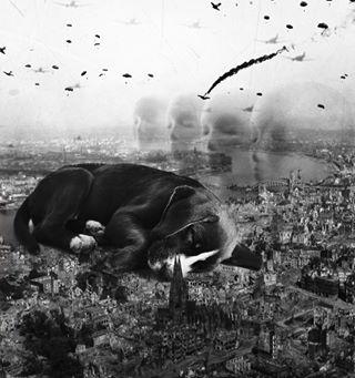 darkart peace dogphotographer battle crimea petart weirdart rescuedog puppy crisis dogportrait ww2 digitalpainting photoshop ukraine refugees war yemen puptrait modernart bnw dogs sleeping aleppo fineart photography surreal popart contemporaryart