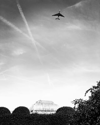 streetphotographyworldwide flightpath londoncallingmagazine mydarlinglondon mylondon airtraffic kewgardens theprintswap summerinlondon thisislondon prettylittlelondon londonparks streetphotography_bw portfoliobox_art airplane everytwominutes aspfeatures visitlondonunofficial londoncalling somewheremagazine thepicturebook blackandwhitephotography emirates palmhouse thisisourlondon loveislight myfeatureshoot eyesshotmag architecturephotography streetphotographylondon