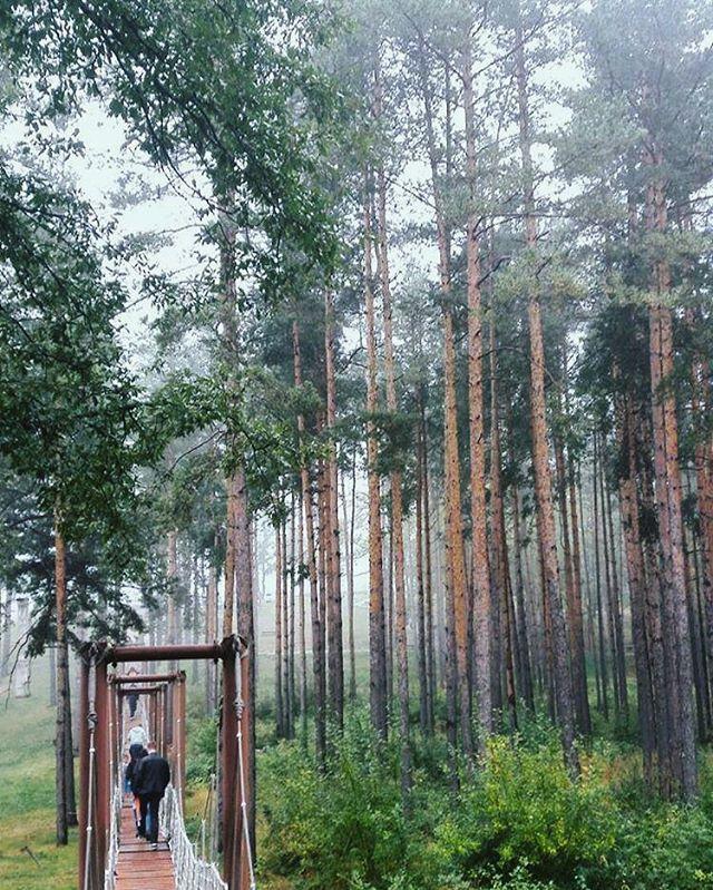 ikableshkova photo: 0