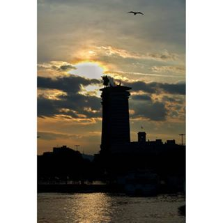 barcelonadays photooftheday_sa statue columbusstories memory sunset sobarcelona showmetheway flyinhigh sobarcelonamuchwow barcelona_world firesky columbus bird beauty