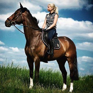 blond caballo cavalli cavallo cheval equestrian equestrianphotography fashionblogger horse horsephotographer horsephotography horses horsesofinstagram nikon paardje pferde pferdeblog pferdefotografie pferdeliebe pferdeschönheit photooftheday photoshoot pony springpferd wiese