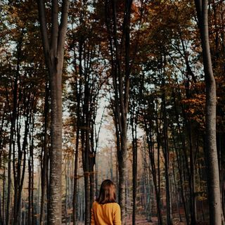 stayhome photographer savage lost forrest peoplephotography peoplegallery people_infinity_ portraitphotography portrait_planet portrait_vision portrait_society