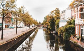 sonyalpha sonya7iii photography lightroom holland denhaagcity denhaag autumn
