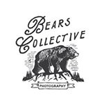 Avatar image of Photographer Bears Collective