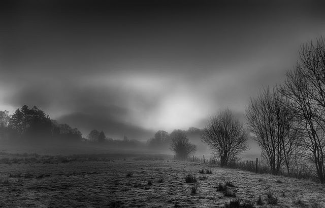 blackandwhite bnw dawn eerie fantasy field fog foggy göteborg gothenburg helenevik landscape magic mölndal scandinavia scenery spooky sunrise sweden
