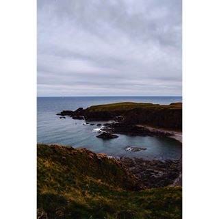 countryside cliff traveller scotland photographer travelawesome shore flowers stonehaven nature ocean brightyellow travelling moodysky cloudysky travelgenerationsubmission luxepicture passporttoearth theglasspassage unitedkingdom trip