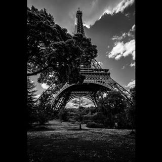 paris proud photography photographer different classic light blackandwhitephotography tree tower landscapephotography contrast france bnwzone garden landscape view black blackandwhite shadow toureiffel perspective