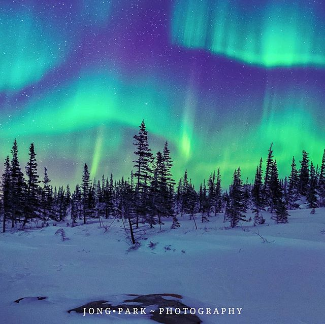 alberta breathtaking canada canon dawn details exposure fstoppers highcontrast highlights horizon ice iso jbnitrophotography landscape lofi mountainrange mountains nightview nocturnal northernlights panorama shadows sigma sky snow snowy spectacular starrysky zoomlens