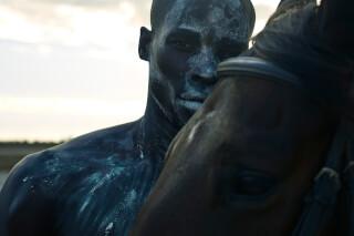 Portfolio HORSEMEN photo: 1