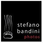 Avatar image of Photographer Stefano Bandini