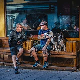animallovers animalsofig doglovers dogowner dogsofinstagram igdaily igersstockholm igstreet igsweden loves_sweden_ loves_united_scandinavia peopleofthestreets peoplewatching södermalm stockholm streetphotography swedish visitsweden what_i_saw_in_sweden
