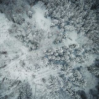 bavaria cold discover dji drone dronefly dronephotography greay landscape neverstopexploring photo snow wood