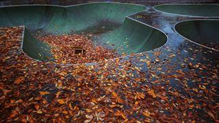 autumn colored dropin instadaily instagood instagram instamood leafporn leafs lövöverallt mothernature narcissismgram nextyeariwilllearnhowtoripthatbowl picoftheday saturday seasons skateordie sony sonyphotography sonyxperiaxz1 spidde tranquilo