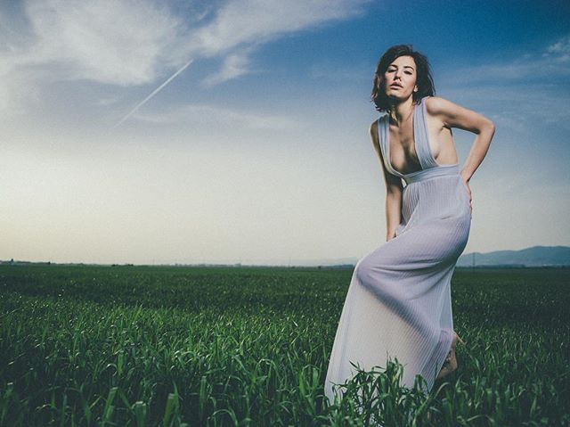 open white hasselbladx1d dress field