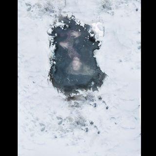 art photography photographer artwork winterismelting underwater