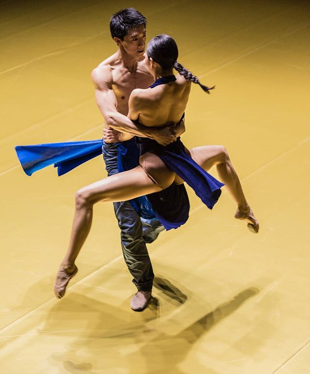 ballettzuerich dancing golden choreography freezing motion jacopogodani body the spin one people performance muscles stage khamzindmitry gold language on art balletphotographer as magic dance duet be worldwide beautiful
