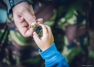hands outdoor together two berries igers people sharing feeding fatherandson creative food bodyparts hand emotion moment closeup pair males parenting bodypart