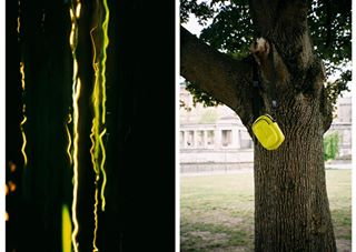 berlin collaboration crossbag 가방 vee f4f tree 패션 nature daily 35mm 크로스백 location alltag fotograf film tasche