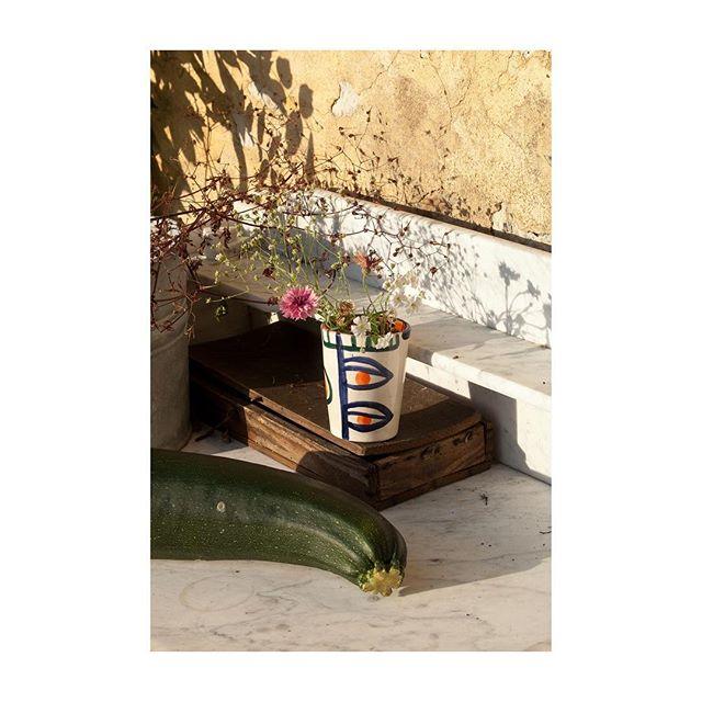 organic funnybonesstudio gardening duneile regainmagazine