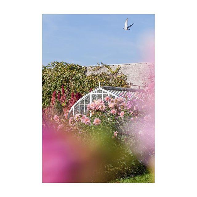 floral gardens loirevalley