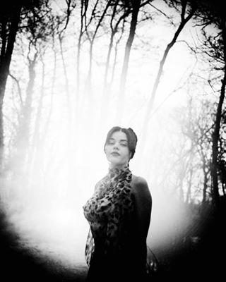 singer photographerassistant portrait band 50mm blackandwhiteisworththefight forest blackandwhite smokebombs d800 beautiful