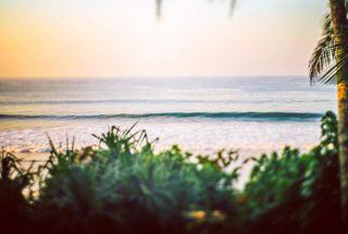 wave meddawatta surflanka
