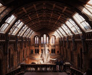 14mm alwaystraining amatorial amazing architecture inspiring liveoutdoor londonist memories naturalhistorymuseum olympuscamera photography photogrid photooftheday prism shooting simmetry traveling vscotravel yallerseurope