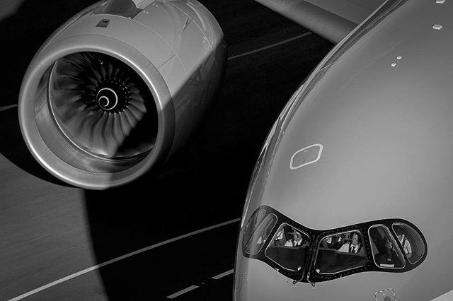 aviationphotography d800 airport plane adelaideairport airbus qatara350 racoon aviationdaily avgeek airbuslovers professionalphotographer rollsroyceaviation myfeatureshoot a350xwb nikon qatarairways trent a350 engine photographer runway apron aviation rollsroyce trentxwb megaplane