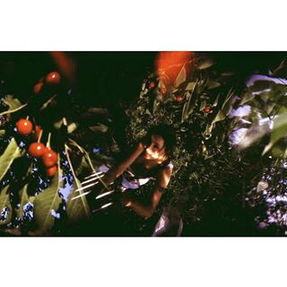 doubleexpomagazine back2thebase apricotmagazine curatorselection bestfilmphoto