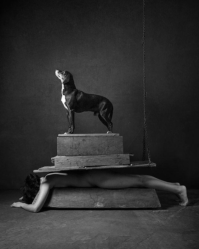 cane animali fineart blackandwhite dog grotesque woman animalist arte bizzarro bizarre surreal surreale animals donna art